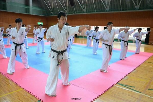 Japan Team (2)