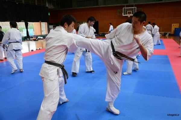 Japan Team (4)
